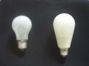 電球と電球型蛍光灯