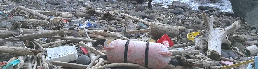 海岸のプラスチックごみ